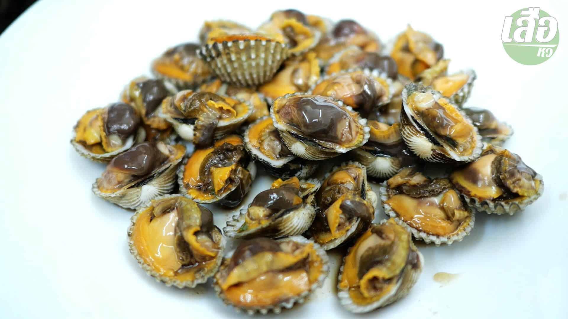 หอยแครงแกะ